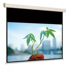 Экран авт. Cinelectric Screen 240 x 166 см (230х129)